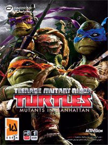 turtles-